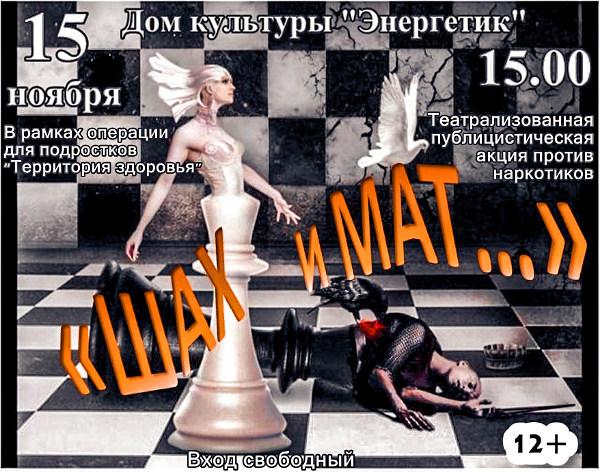 """Театрализованная публицистическая акция """"Шах и мат"""""""